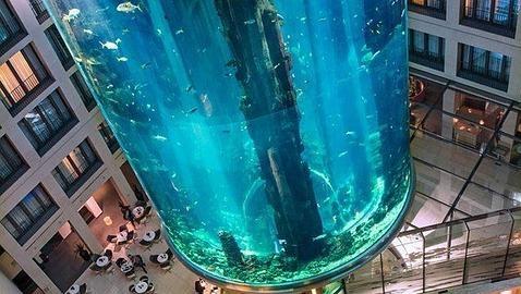 Vệ sinh thang máy khổng lồ, thang máy kỳ quái